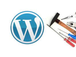 Creëer je eigen website - Module 2: Website-bouwen voor professionals (Wordpress) | Woensdagavond 18u30 tot 21u30 (semestercursus)