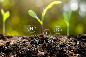 Ecologisch tuinonderhoud  | Donderdagavond van 18u30 tot 22u10 ( van 03/09 tot 28/01/2021) | Locatie Maasmechelen
