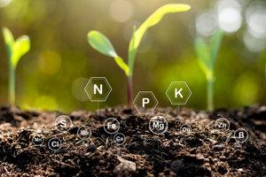 Ecologisch tuinonderhoud PIBO | Donderdagavond van 18u30 tot 22u10 ( van 02/09 tot 28/01/2021) | Locatie Tongeren