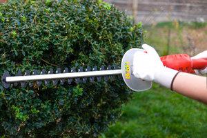 Snoeien van hagen | Maandag van 9u00 tot 16u00 (5 dagen van 13/09/2021 tot 11/10/2021) | Locatie Maasmechelen