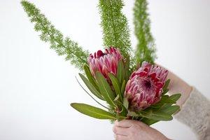 Florist Jaar 5 : Commercieel bloem- en plantwerk| Donderdagvoormiddag 9u00 tot 12u40 ( van 02/09/2021 tot 20/01/2022) | Locatie Maasmechelen