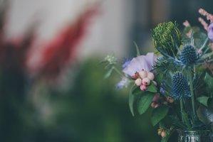 Florist Jaar 6 : creatief bloem- en plantwerk | Donderdagnamiddag 13u30 tot 17u10 ( 1x/14 dagen van 09/09/2021 tot 16/06/2022) | Locatie Maasmechelen